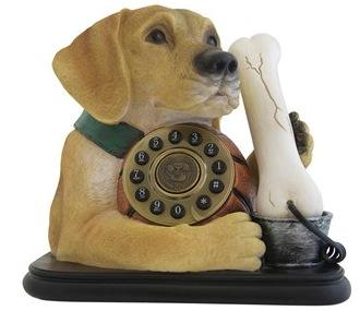 Dog&bone