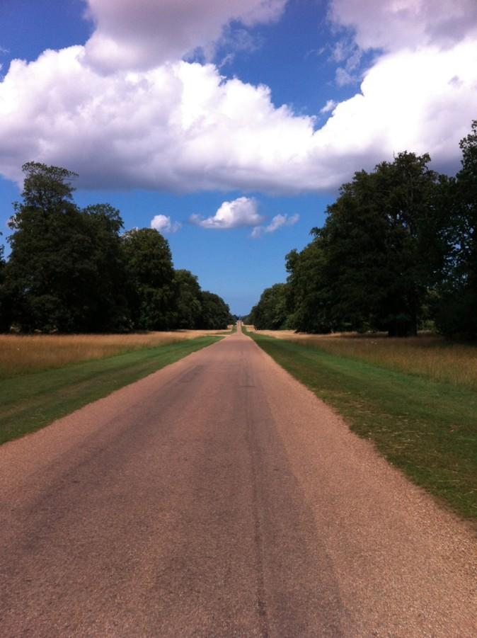 Holkham walk